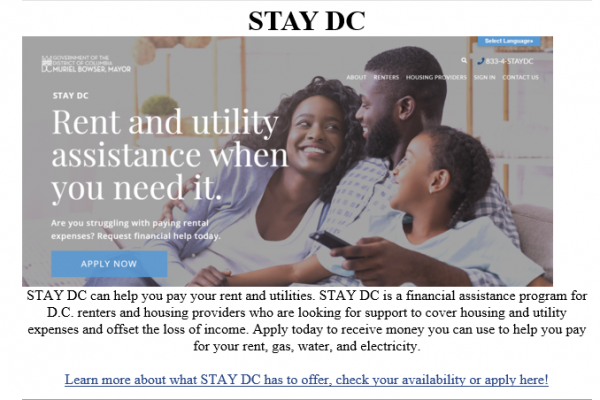 STAY-DC-Image